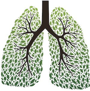 MRP_02_June_2015green-lungs