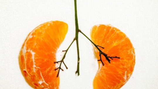 lungs-as-oranges